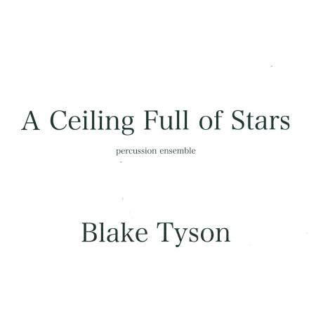 A Ceiling Full of Stars by Blake Tyson