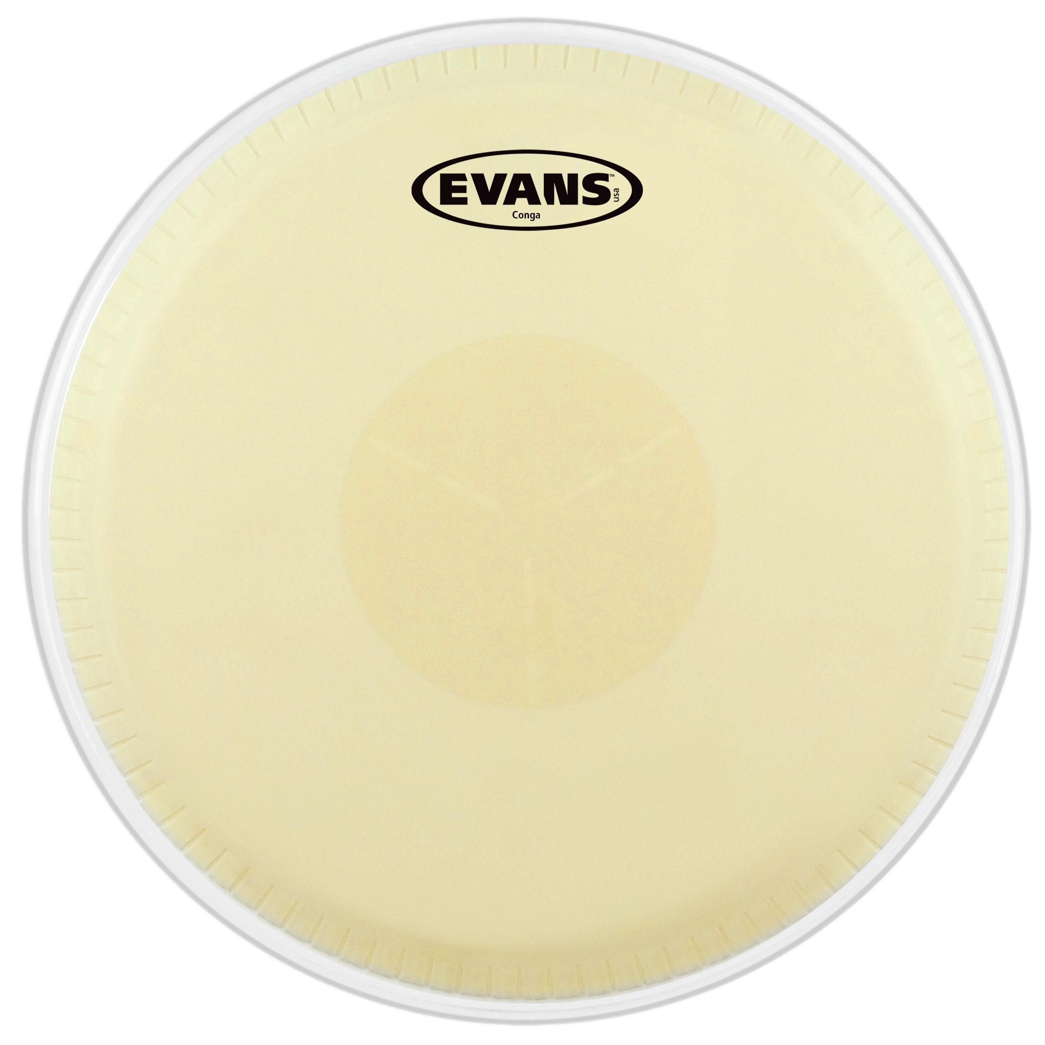 "Evans 11"" Tri-Center Extended Conga Head"