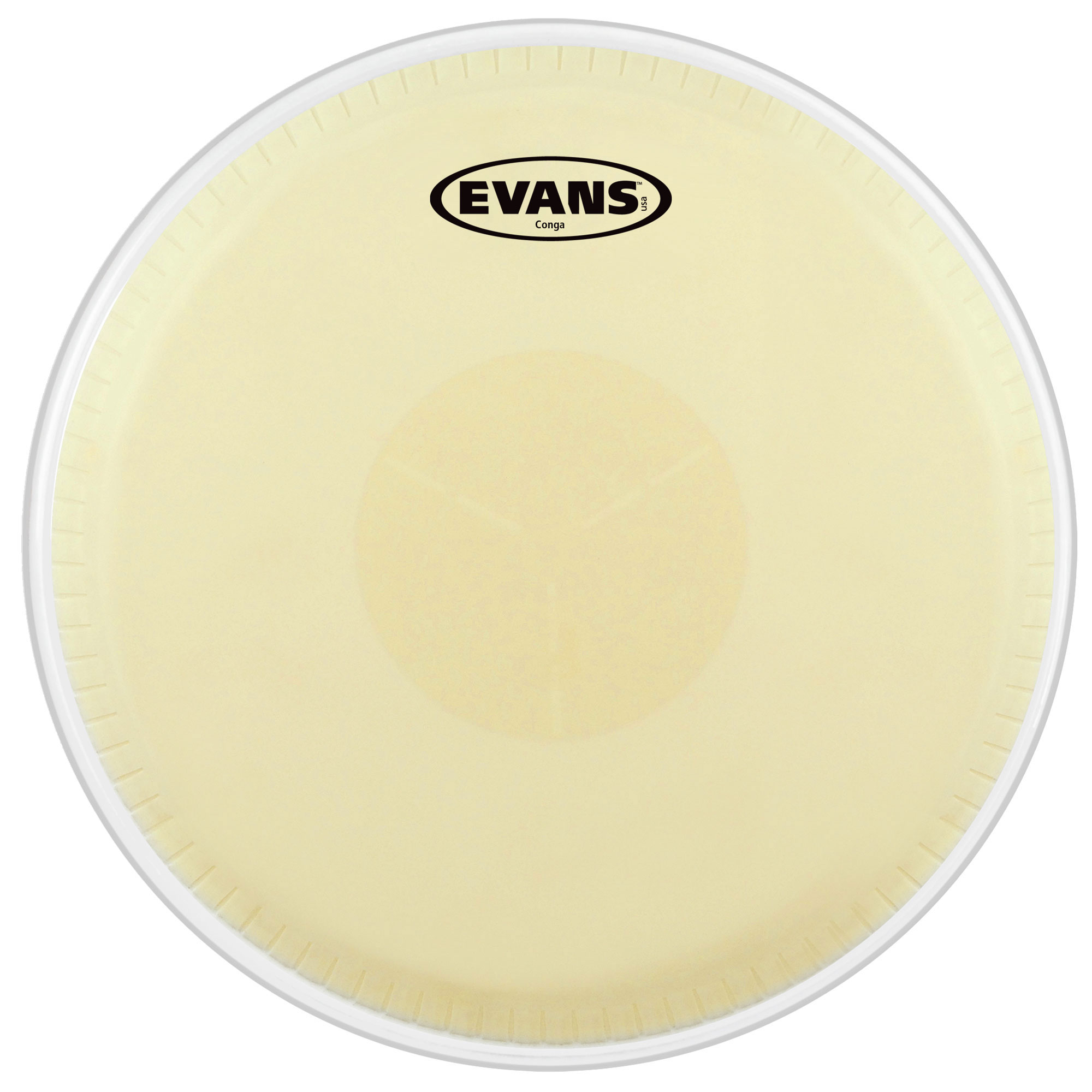 "Evans 12.5"" Tri-Center Extended Conga Head"